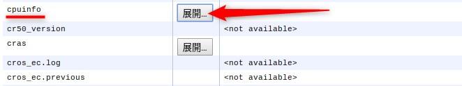 Chromebook システムについて CPU情報を展開